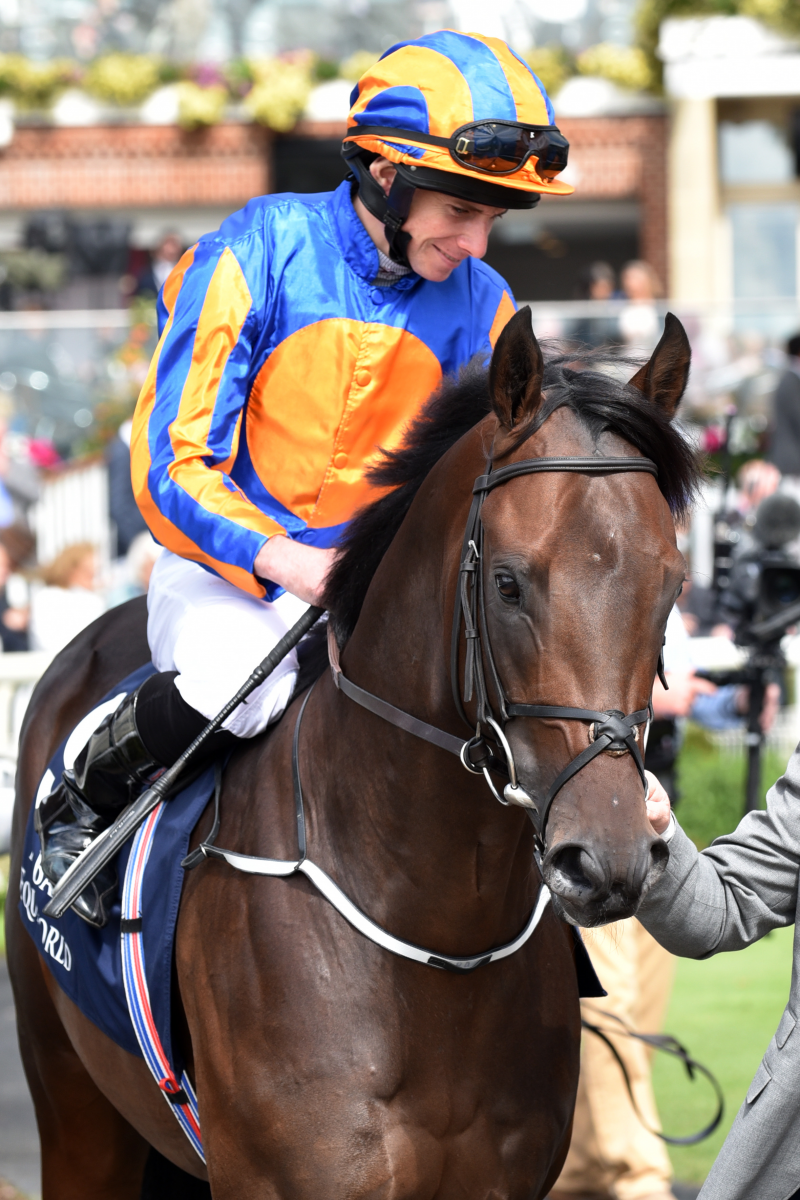 The Irish Rover - Ryan Moore