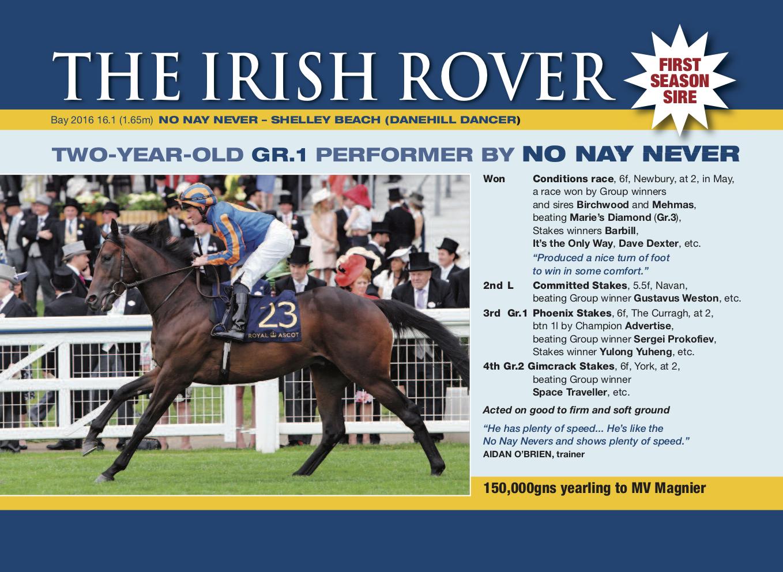 The Irish Rover(5)