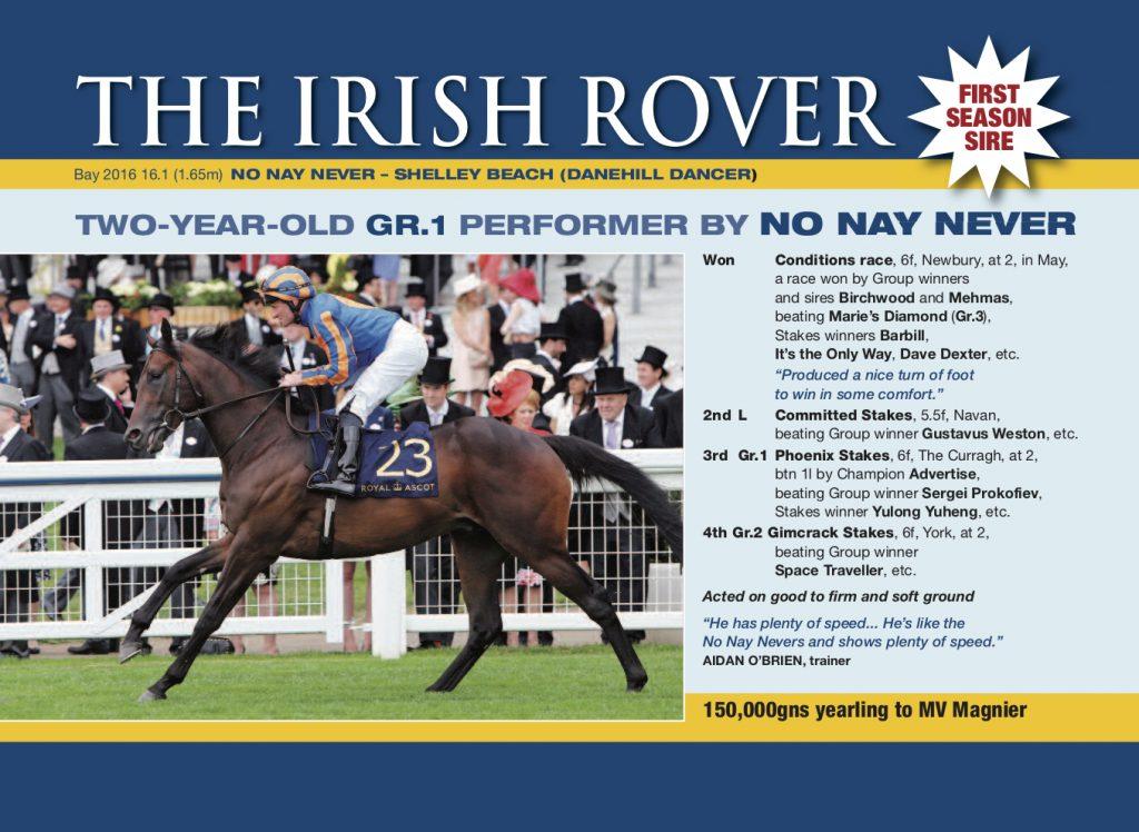 The Irish Rover Stallion